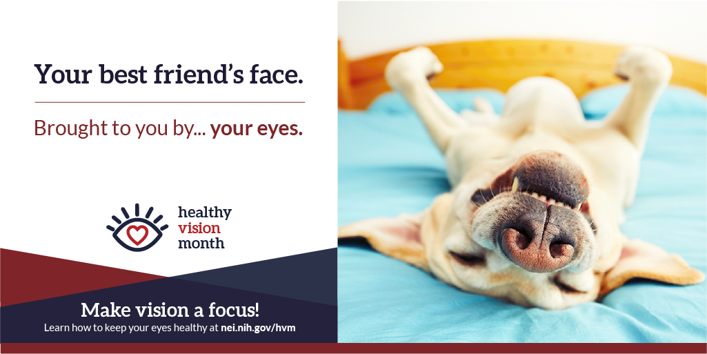 Your best friend's face. Brought to you by... your eyes. Make vision a focus! Learn how to keep your eyes healthy at nei.nih.gov/hvm