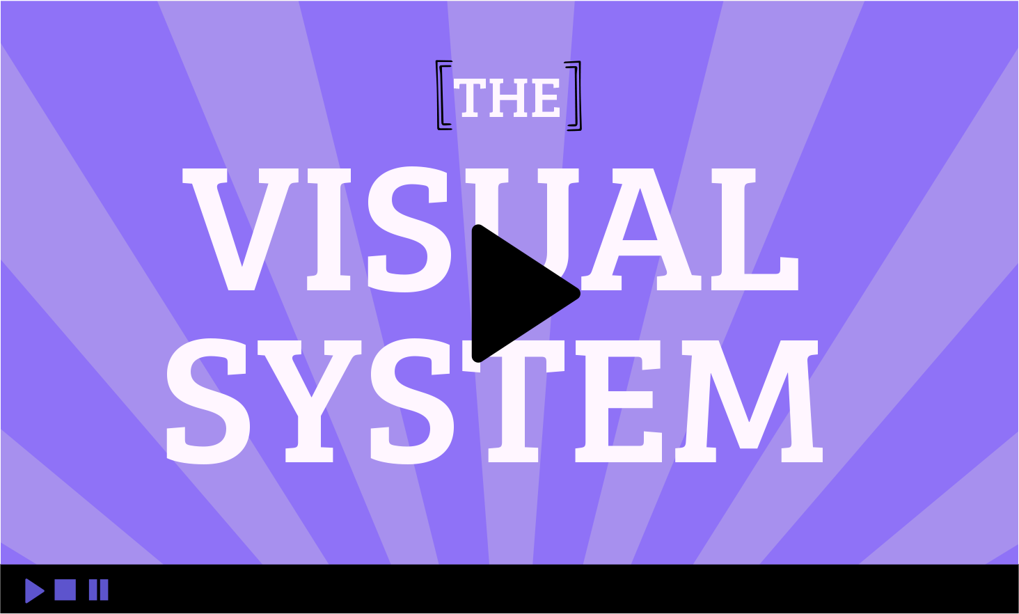 visual system video