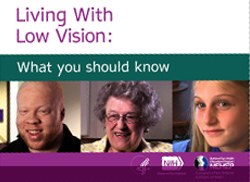Link to the webpage Living with low vision educational tools
