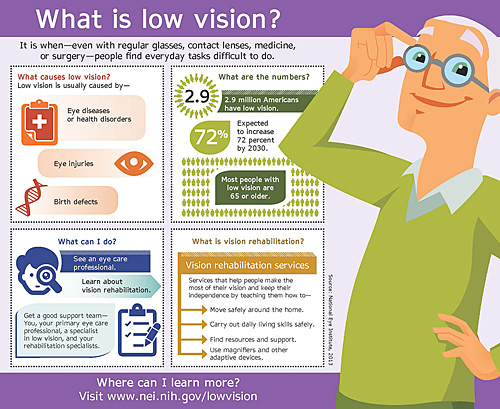 Low Vision Infographic in English Preview