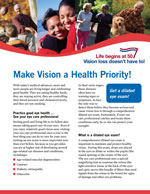 Make vision a health priority