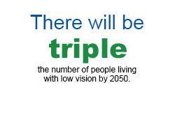 Vision-and-Aging-Program-Stats-03
