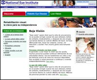 Low Vision Education Website