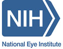 The National Eye Institute Website: What;s New?