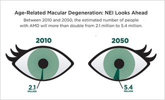 Each eye represents a total of 80 million people, the estimated number of Americans who will be 65 and older in 2050, the population most affected by common eye diseases.