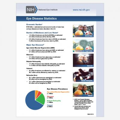 thumbnail image of Eye Health Statistics document