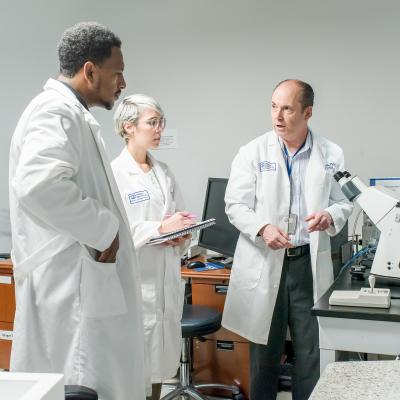 Three scientists consults about a vision research project.