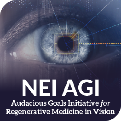 NEI Audacious Goals Initiative for regenerative medicine in vision identity mark
