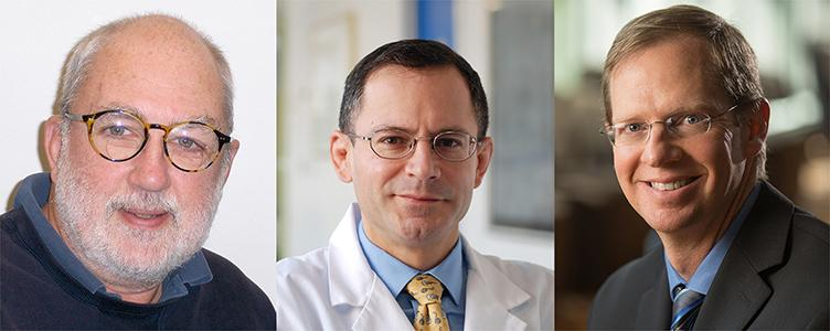 Photos of Principal Investigators: John H. Wolfe, Children's Hospital of Philadelphia; William A. Beltran, University of Pennsylvania; David M. Gamm, University of Wisconsin