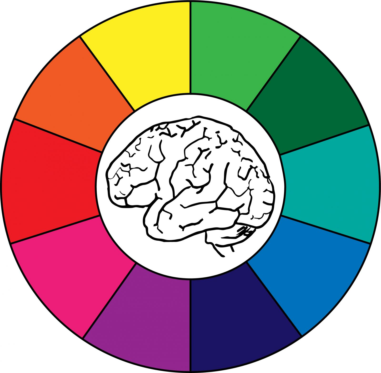 Drawing of brain inside a color wheel