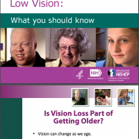 Living with Low Vision Booklet