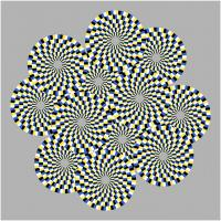 Optical illusion with circles that appear to rotate