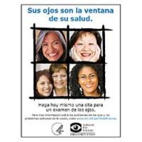 Afiche sus Ojos Son la Ventana de su Salud, Versión 1 (Your Eyes Are The Windows To Your Health Poster, Version 1.)