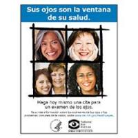 Afiche sus Ojos Son la Ventana de su Salud, Versión 2 (Your Eyes Are The Windows To Your Health Poster, Version 2)