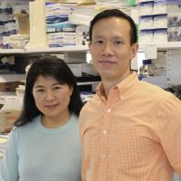 Xu Wang with Wai Wong in lab