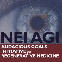 NEI AGI Audacious Goals Initiative for Regenerative Medicine